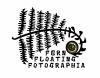 Fern Floating Fotographia