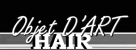 Objet D'Art Hair Studio